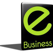 Breizh Business: Quelle est cette rubrique ?